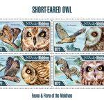 Owl stamp 2